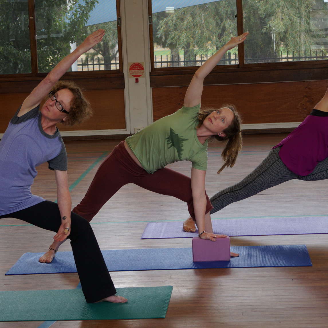 Vinyasa Flow Yoga Teacher Training Canberra or Adelaide ...