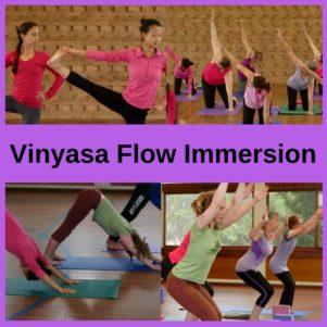 Vinyasa Flow Immersion Training